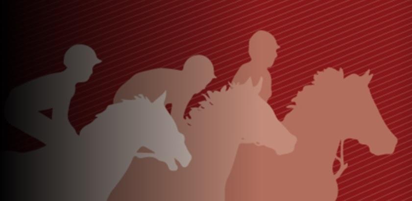Los caballos corren hasta la meta.
