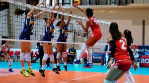 Qué Son Y Cómo Funcionan Las Apuestas De Voleibol